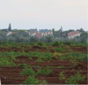 החברה למימוש קרקעות רעננה פארק