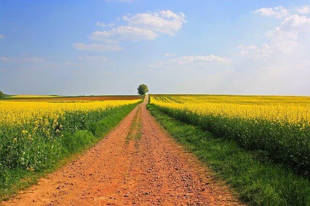עדכני קרקעות חקלאיות למכירה החל מ-99,000 ₪ + קרקע חקלאית [המדריך] ZA-15