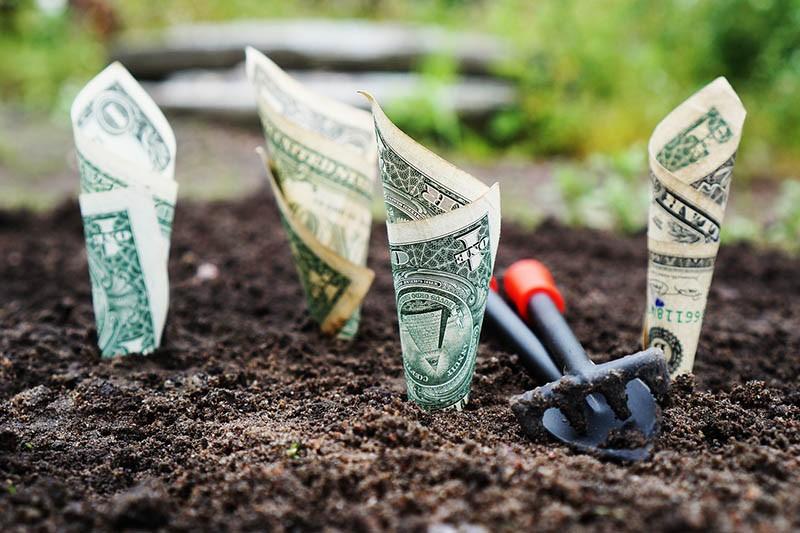 לחסוך ולהשקיע כסף